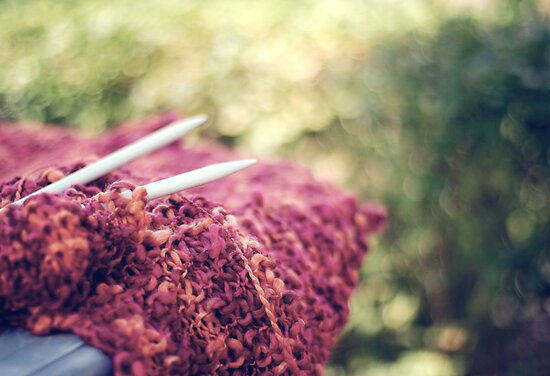 Morning knitting by Karin Elizabeth