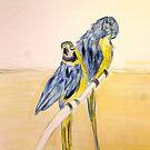 Parrot Couple by Melissa Contreras