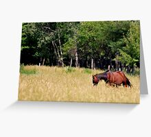A Horse, of Course Greeting Card