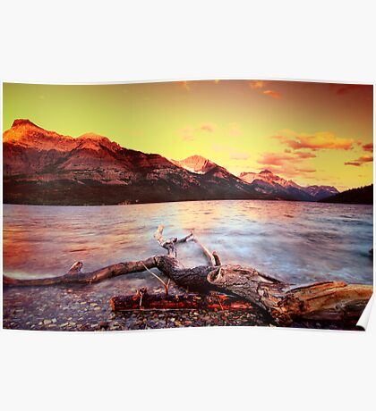 Waterton National Park camp1 Poster
