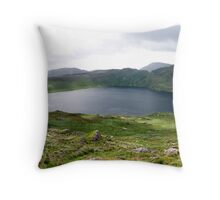 Barley Lake Throw Pillow
