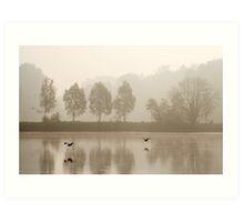 Flying herons Art Print