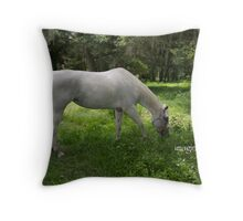 lacey's bow Throw Pillow