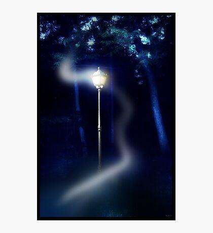 Light My Way Photographic Print