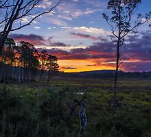Sunset on the Overland Track Tasmania. by Nicholas Griffin