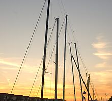 Sailboats at Sunset by gharris