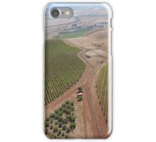 Napa Valley Grapes iPhone Case/Skin