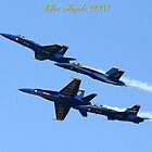 Blue Angels 2008 Dimond formation #1 by Peggy  Zinn