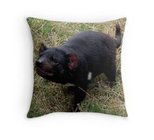 photoj Tassie Devil Throw Pillow