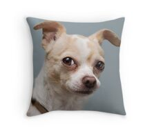 Curious Chihuahua Throw Pillow