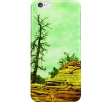 Winter at Zion National Park iPhone Case/Skin