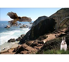 943-Pacific Highway Drama Photographic Print