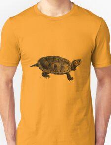 Turtle Victorian Print T-Shirt