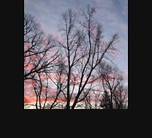 Pink and Purple Sunrise Beyond The Trees Photograph Unisex T-Shirt