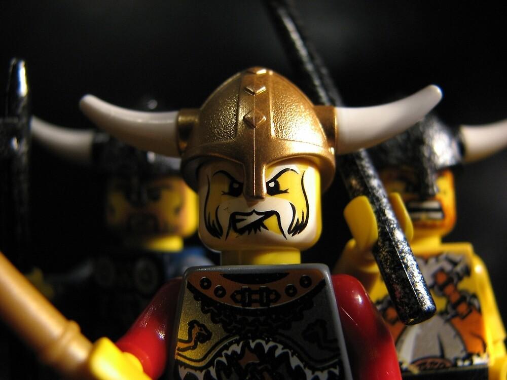 Vikings on the Rampage! by Shauna  Kosoris