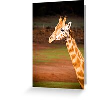 Giraffe at Monarto Zoo Greeting Card