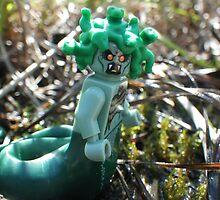 Medusa in the Swamp by Shauna  Kosoris
