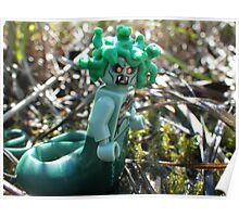 Medusa in the Swamp Poster