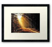 Submission no. 1000 Framed Print
