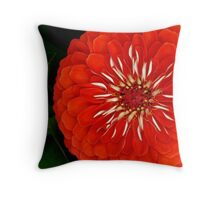 Voodoo Touch Throw Pillow