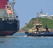 BRITISH LOYALTY CARGO SHIP by Phil Woodman