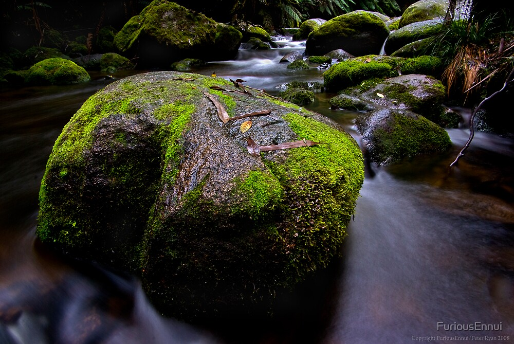 Toorongo River Rock by FuriousEnnui