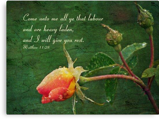 Matthew 11:28 by Jonicool