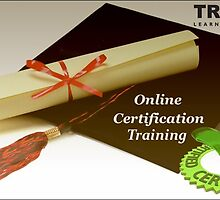 Online Certification Training Programs - Track Learning Solutions by tracklearning