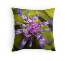 Dogbane Flower Throw Pillow