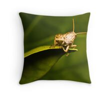 Just hangin' around Throw Pillow