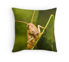 Strike a pose! Throw Pillow