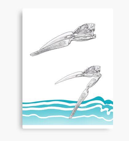 The Skimmer Canvas Print