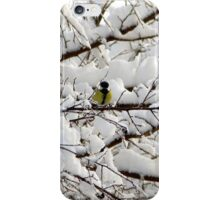 A Twee Bit of Colour For Your Winter iPhone Case/Skin