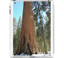 some really big trees iPad Case/Skin