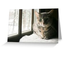 Piercing Green Eyes Greeting Card