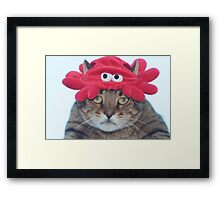 Why is there a crab hat on my head? Framed Print