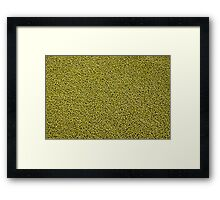 green seeds Framed Print