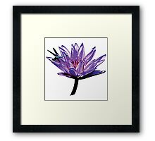 Dragonfly on Purple Water Lily Framed Print