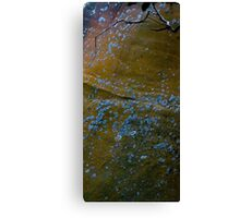 Bronze wall Canvas Print