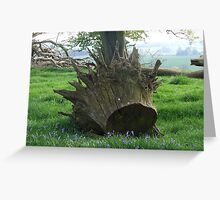 Tree Crown Greeting Card