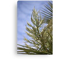 Flower-spike Canvas Print