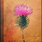 The Thistle by Ludwig Wagner