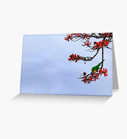 Parakeet's Paradise Greeting Card