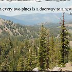 Two Pines by Judy Yanke Fritzges