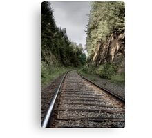 Going in the Right Direction Canvas Print