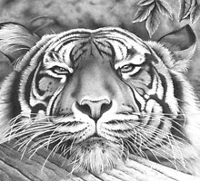 Relaxed in Ballpoint Pen by Ron  Monroe