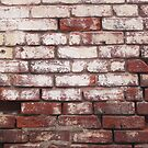 Broken Wall 1 by Stephen Mitchell