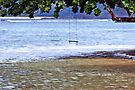 Anini Beach - Kauai by DJ Florek