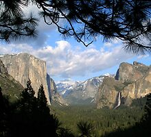 Yosemite Valley by Mar Silva