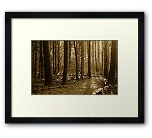 The Dark Side Framed Print